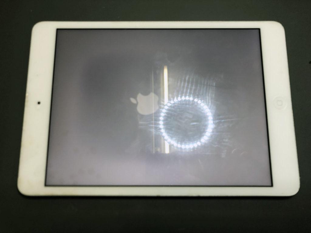 iPad mini 2 液晶不良